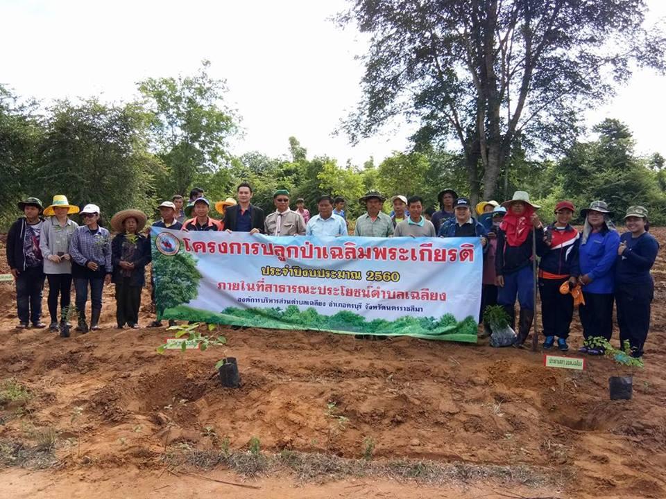 โครงการปลูกป่าเฉลิมพระเกียรติ ประจำปี 2560